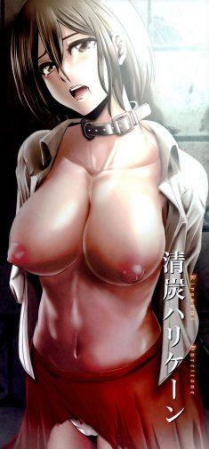 Nyoro Nyorozou – Kiyosumi Hurricane – Gekishin Ni | Firing pin 2